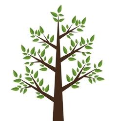tree plant design vector image