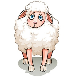 A white sheep vector image