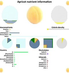 Apricot nutrient information vector