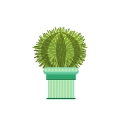 Big Globe Shape Cactus In A Pot vector
