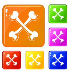 Bone icons set color vector