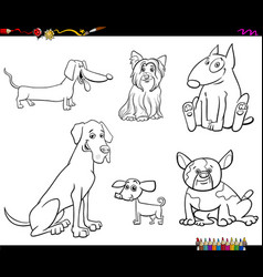 cartoon purebred dog characters color book vector image