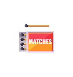 matches cartoon vector image