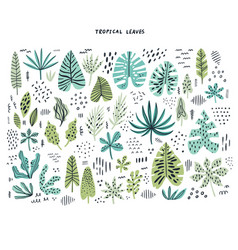 Tropical leaves hand drawn flat set vector