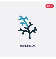 Two color cypress leaf icon from nature concept vector