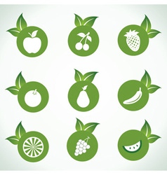 Different fruit icons and design with green leaf vector image
