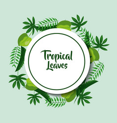 tropical leaves poster card round decoration vector image