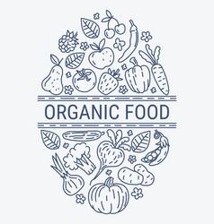 healthy organic eco vegetarian food design vector image vector image
