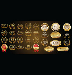 luxury gold and silver design badges and labels vector image