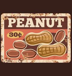 peanut nuts metal rusty plate food market price vector image