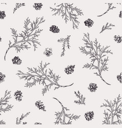 seamless pattern with juniper branches vector image