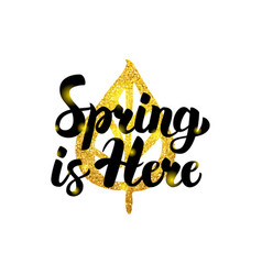 spring is here gold inscription vector image