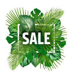 summer sale banner with tropical leaves vector image