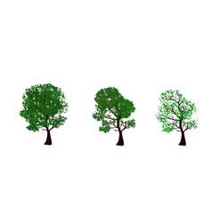 the set of summer and spring trees vector image