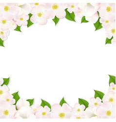 apple flowers border vector image