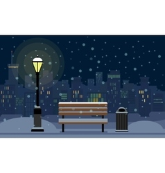 Night Cityscape and Snow vector image