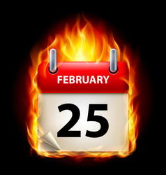 twenty-fifth february in calendar burning icon on vector image vector image