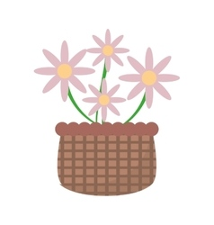 basket with pink flowers icon vector image