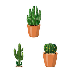 cactus and pot icon set of vector image