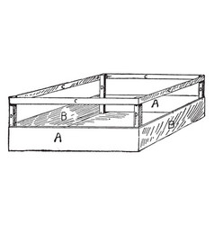 celery crate vintage vector image