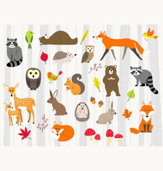 cute wild animals cartoon set vector image