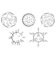 influenza viruses vector image
