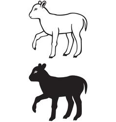 Lamb contour vector