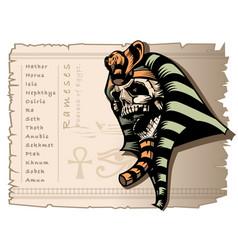 the skull mummy rameses pharaoh of vector image
