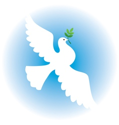 Dove with branch vector image vector image