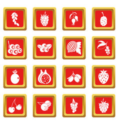 berries icons set red vector image vector image