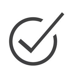 correct icon vector image