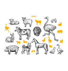 farm animals hand drawn set vector image