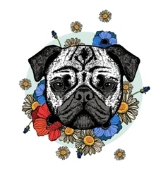 Graphically cute pug dog with flowers vector image