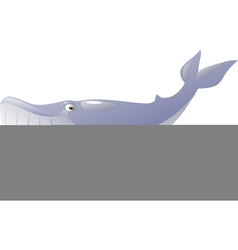 Isolated blue whale vector