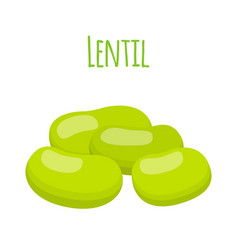 legume plant green soybeans lentil bean vector image