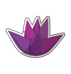 lotus flower icon vector image