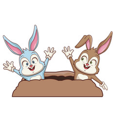 Rabbits couple in ground vector