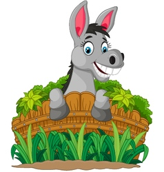 Donkey cartoon holding fence vector image vector image