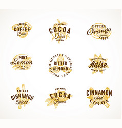 cocoa spices and coffee abstract sign vector image