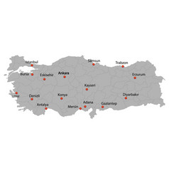 detailed map turkey vector image
