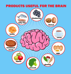 Products useful for brain vector