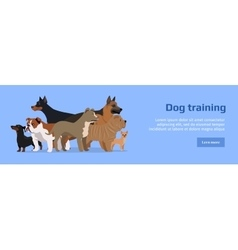 Professional Dog Training Service Banner vector