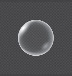 realistic water bubbles isolated vector image