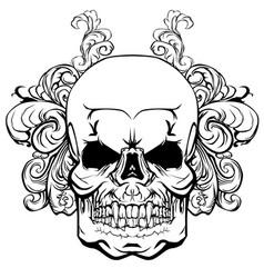 skull with elements a vegetative ornament vector image