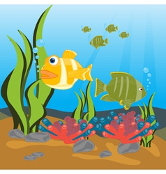 Tropical fishes seaborne vector image