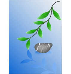Wet pebble stone and green leafs vector