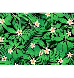 Tropical frangipani flowers on green leaves vector image vector image