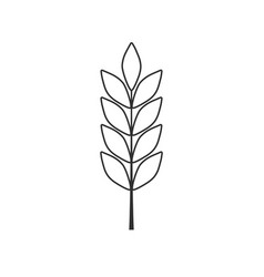 barley or wheat icon in black flat outline design vector image