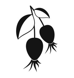 dogrose berries branch icon simple style vector image