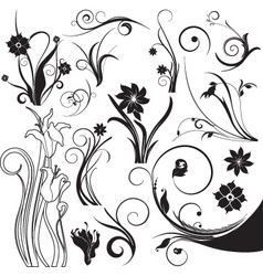 Floral design elements vector